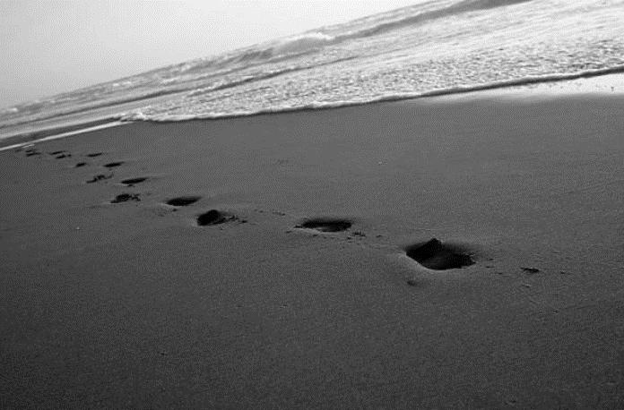 pas-sable.png